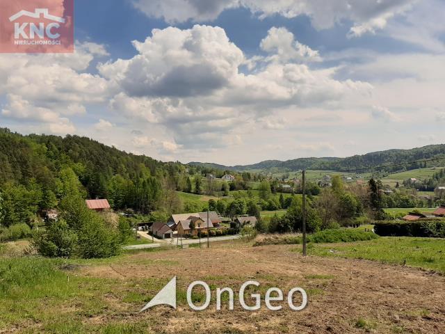 Sprzedam działkę gmina Gródek Nad Dunajcem zdjęcie4