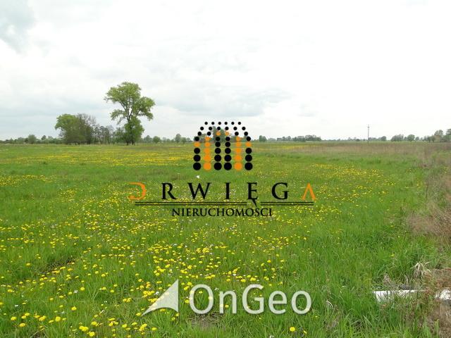 Sprzedam działkę gmina Gorzów Wielkopolski zdjęcie4