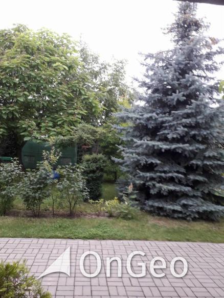 Sprzedam dom gmina Kutno zdjęcie10
