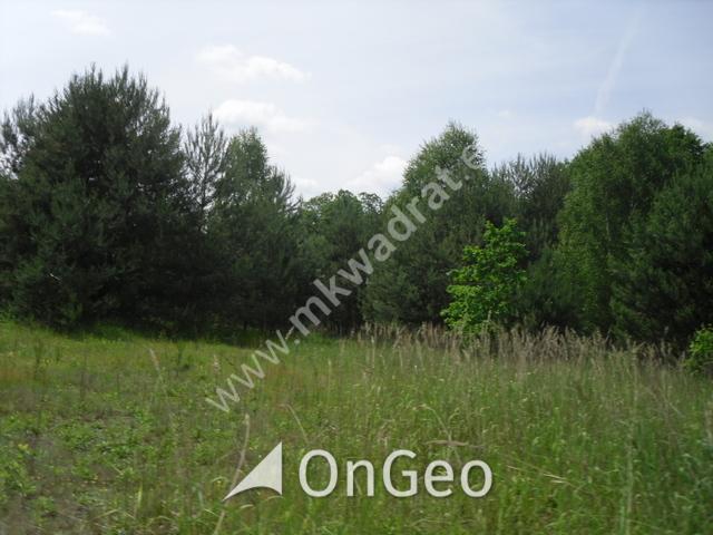 Sprzedam działkę gmina Kowiesy zdjęcie9