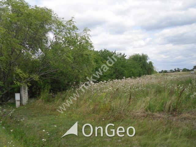 Sprzedam dom gmina Skierniewice zdjęcie8