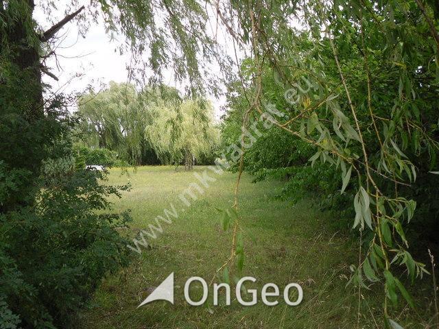 Sprzedam dom gmina Skierniewice zdjęcie9