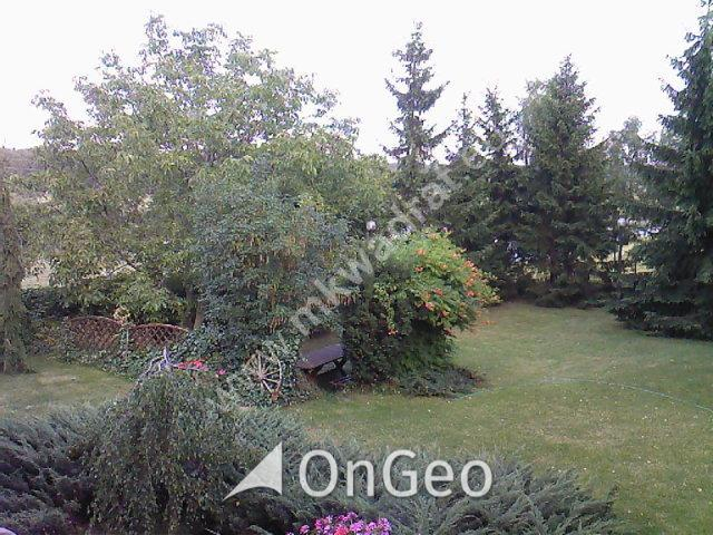 Sprzedam dom gmina Skierniewice zdjęcie4
