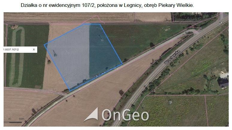 Sprzedam działkę gmina Legnica zdjęcie4