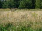 Nieruchomość Sprzedam działkę - Zielonka