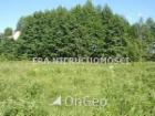 Nieruchomość Sprzedam działkę - Dobrzyniówka