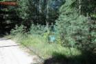 Nieruchomość Sprzedam działkę - Sokolniki-Las