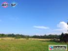 Nieruchomość Działka w sąsiedztwie lasów- 26 km od Gdańska